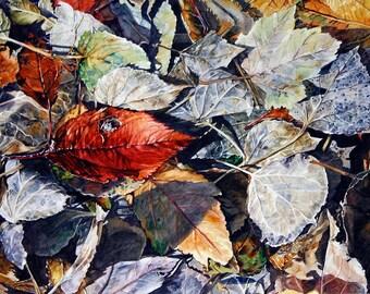 Watercolor Leaves Print- Diamond- Fall Leaves- Award Winning- Watercolor Print- Red, Grey, Blue- 12x16