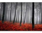 Forest Leaves Nature LARGE Photo Painting Canvas Art Print FRAMED Ready to Hang - 1 PANEL