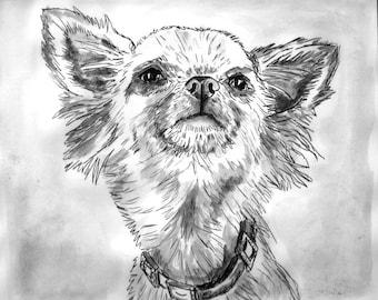 Spoilt Chihuahua art, original dog portrait in black ink. mono print, hand pulled print.