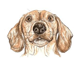 Custom Pet Animal Portrait painting, dog, cat, rabbit etc, in water color, ink, acrylic paint