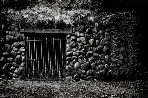 Watching the Cellar - 8X12 Fine Art Photograph