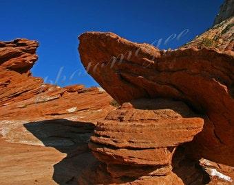 Zion Rocks - 8x10
