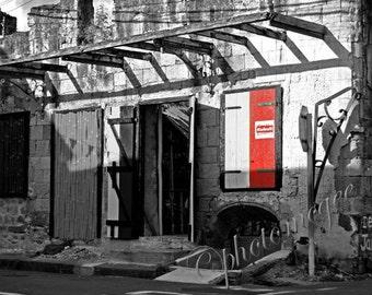 Red  Door 8x10