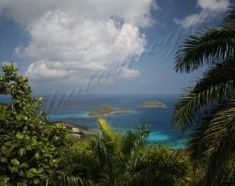 Tropical Serenity - 16x20