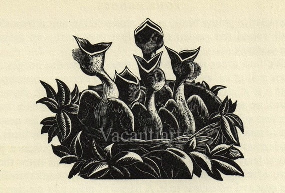 Vintage Wood Engraving Print CLARE LEIGHTON From Four Hedges 1935