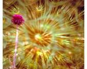 Dandelion Art Note Card