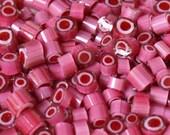 """Murrini """"Pink Penny""""  - SRA - FHF - UK"""