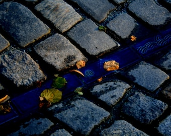Bricks and Leaves Photography Print