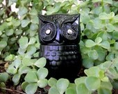 Black Owl with the Golden Eyes