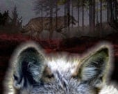 Wolf Under A Full Moon Bookmark