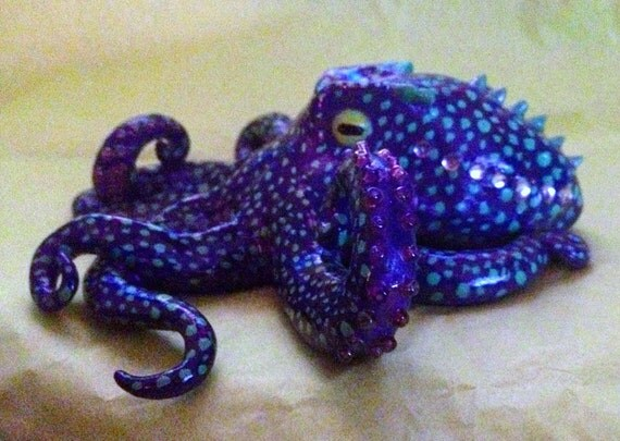 Small spotted octopus