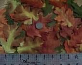 Over 100 Fall Maple & Oak Fabric Leaves Autumn Wedding Decoration Supplies