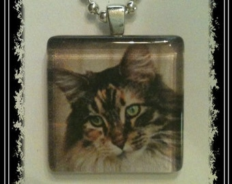 Glass Tile Pendant Necklace--Tabby Cat