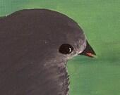 LITTLE GREY BIRD PAINTING