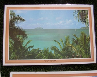 Vintage Scenic Placemats Laminated Place Mats