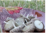 Acorn Cap Floating Beeswax Candles