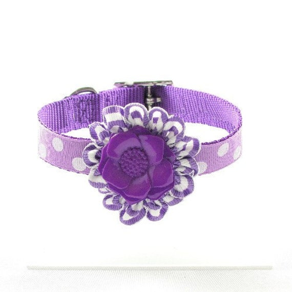 Couture Dog Collar, Whimsey Collection (Purple, Turquoise or Orange)