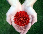 Pistachio Shell Flower Brooch --- Red