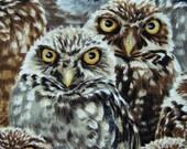 fabric Wide Eyed Owls 1 yd one yard