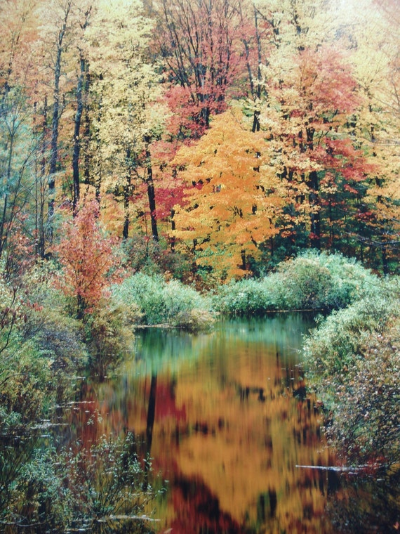 Vintage 11X14 Fine Art Photograph Autumn Fall Foliage Nature Photography Landscape