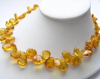 Gorgeous Genuine Natural Honey Lemon Baltic Amber Choker Necklace
