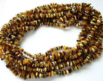 Lot of 5 Genuine Natural Multicolor Baltic Amber Beads LONG Necklace Strands