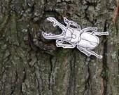 stunning silver beetle brooche