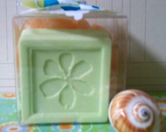Apple Soap and Scrubbie