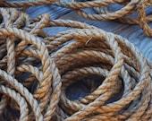 Rope for Tree Swings -  20 feet