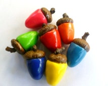 Polymer Acorns with Real Acorn Cap Set of Six Bright Color Collection Choose Colors