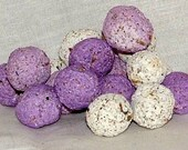 seed balls wildflower seed bombs recycled paper 100