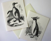 Penguin Note Cards Stationery Set of 10 Cards