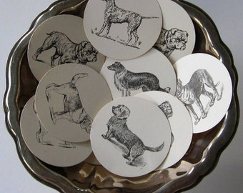 Dog Tags Round Gift Tags Set of 10