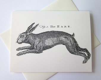 Hare Rabbit Bunny Note Cards Stationery Set of 10 Cards