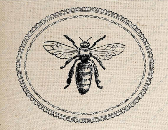 Bee Digital Download for Iron on Transfer in Oval Frame