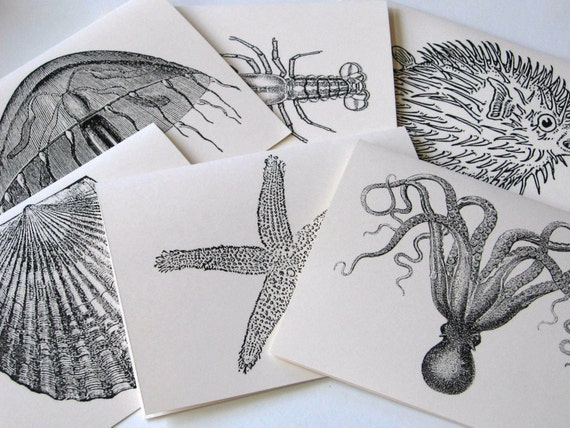 Octopus, Shell, Starfish, Lobster, Puffer Fish, Jellyfish Sealife Note Card Set of 12