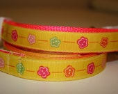 Bright Yellow with Hot Pink Adjustable Small Dog Collar