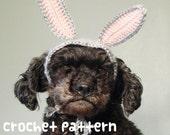 crochet pattern - rabbit pet hat - halloween costume cat amigurumi bunny ears kawaii small dog poodle shihtzu chihuahua - (instant download)