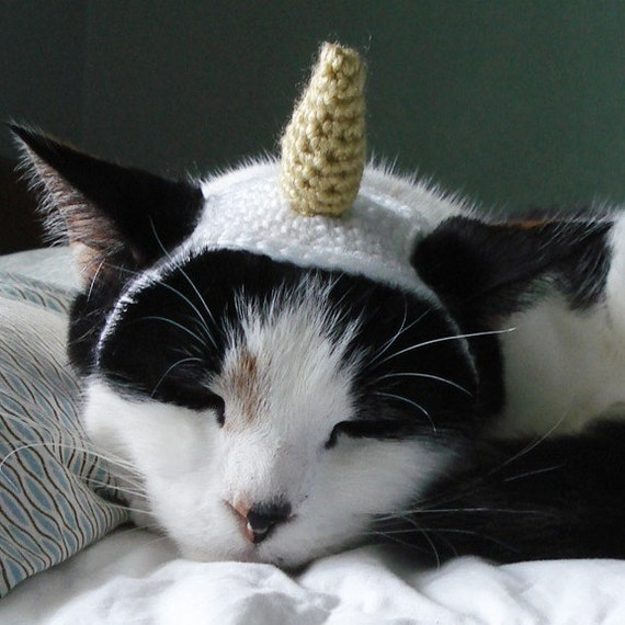 crochet pattern unicorn pet costume by xmoonbloom on Etsy