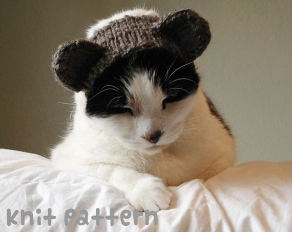 Knitting Pattern For Teddy Bear Hat : KNITTING PATTERN Pet Hat Costume PDF Instant Download