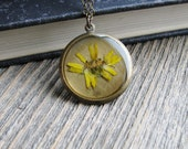 Pressed Yellow Daisy Necklace Botanical Jewelry Pressed Plant Flower Resin Antique Brass Chain