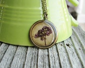 Real Pressed Flower Necklace Botanical Jewelry Spirea Plant Real Pressed Flowers Resin Antique Brass Nature Inspired