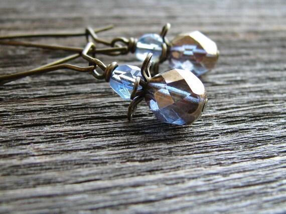 Simple Czech Glass Earrings Long Kidney Ear Hooks - Pixie