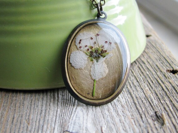 Crabapple Flower Necklace Pressed Crabapple Flower Nature Inspired White Bloom Antique Brass Botanical Jewelry