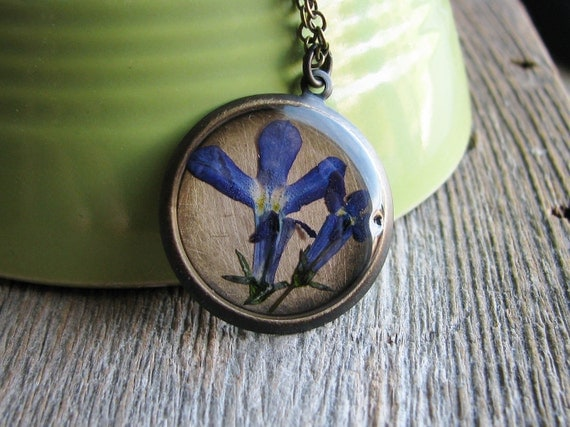 Real Pressed Flower Necklace Botanical Jewelry Pressed Blue Lobelia Plant Resin Woodland Antique Brass Chain Nature Inspired