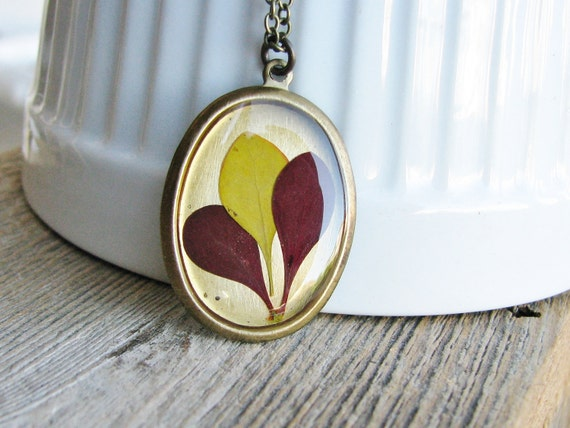 Real Pressed Leaf Necklace Botanical Jewelry Resin Pendant Barberry Bush Plant Oval Pendant Antique Brass Chain