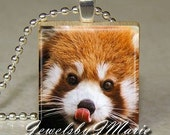 RED PANDA Face Photo Scrabble Tile Pendant from JewelsbyJMarie