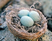 NEW Glitter Nest Ornament with Felted Eggs Light Blue