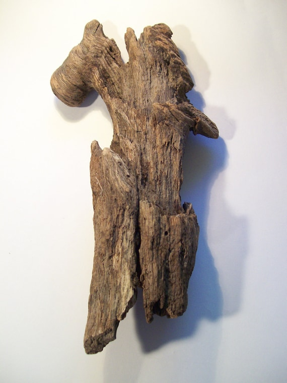 Large Driftwood Piece for Art or Decor