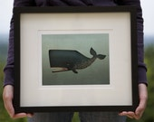 The Barnacle Whale GRAPHIC ILLUSTRATION Giclee print Custom FRAMED 13.5x15.5 Signed